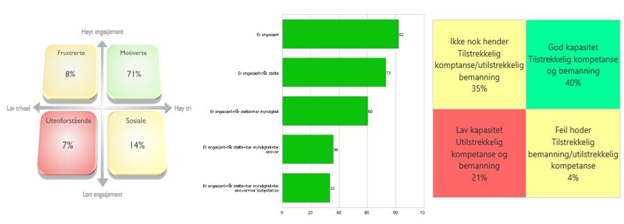 Medarbeiderundersøkelse, motivasjon, handlekraft og kapasitet